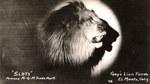 Scéalta Átha Cliath - The MGM Lion (OS)