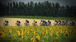 Tour de France Beo